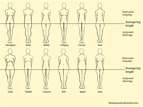 body types and shapes human body awesomely interesting facts images videos