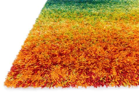 best shag rug best shag rugs home design ideas and pictures