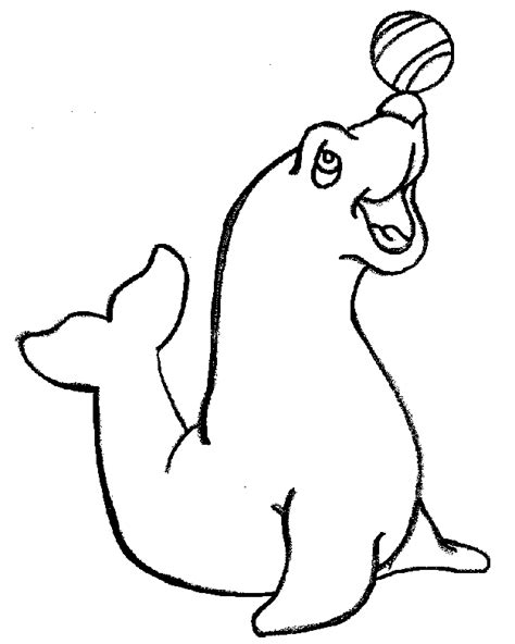 Coloring Page Seal Az Coloring Pages Seals Coloring Pages