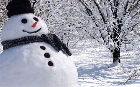 winter real snowman www pixshark com images galleries
