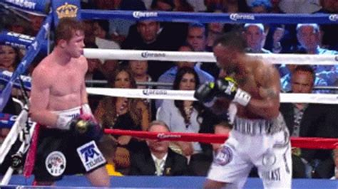 shane mosley style gif find & share on giphy