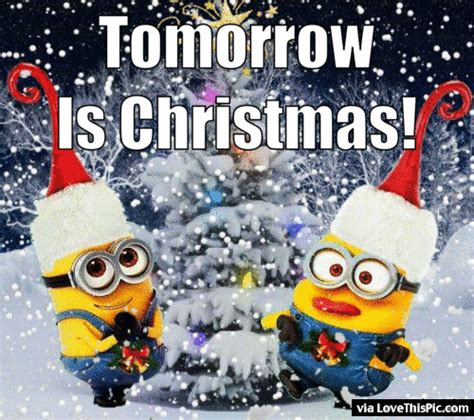 tomorrow  christmas animated minion quote pictures   images  facebook tumblr