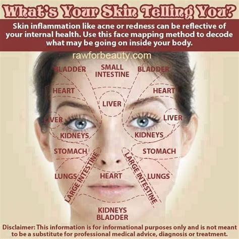 Does Your Skin Get When You Are Detoxing by Acne Map What S Your Skin Telling You Do You Get