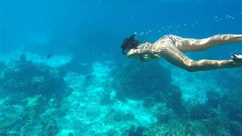 underwater dive free photo underwater visible water free