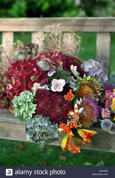 A Selection Of Dried Flowers From Stourton House Flower From The Garden Dried Flowers