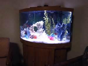 90 Gallon Bow Front Aquarium Liputan Terkini dan Teraktual
