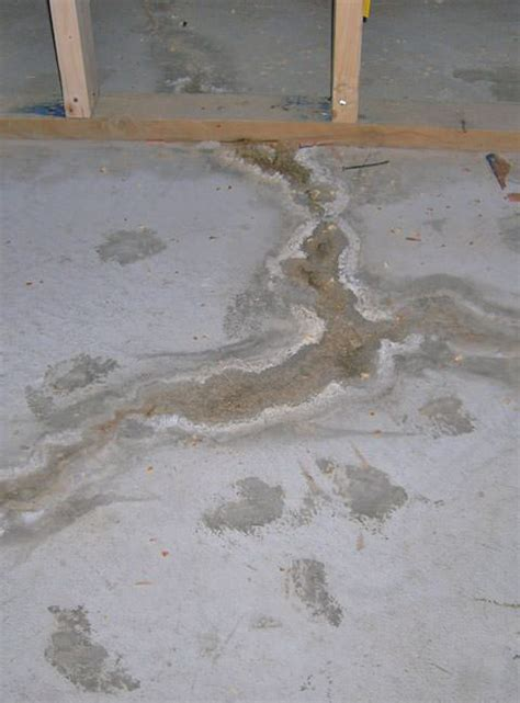 basement floor wall crack repair in newfoundland and