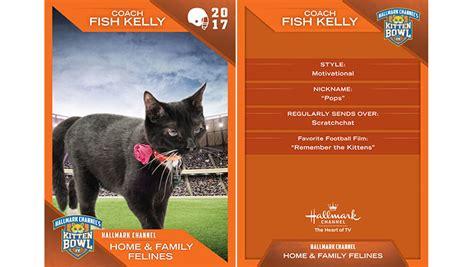 kitten bowl trading cards home family felines 3