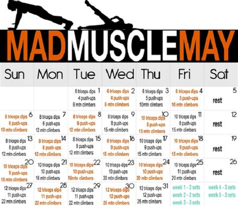 workout plans for men to build muscle at home mad muscle may inspiremyworkout com a collection of