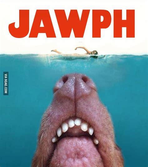 Ugly Dog Meme - 89 best lisp meme dog images on pinterest tuna dog