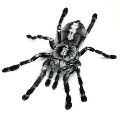 11 tarantula tattoo designs