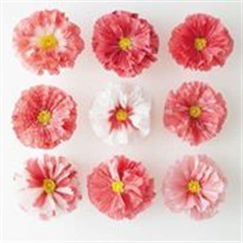 fiori di carta velina come realizzarli come fare fiori di carta crespa fiori di carta fiori