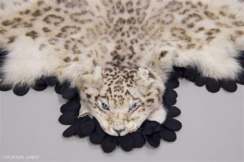 snow leopard rug taxidermy snow leopard skin taxidermy jungle