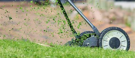 Ahm Gardan aerating your lawn and lawn edging the winter season lawns for you