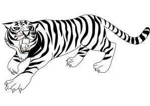 White Tiger Coloring Pages Az Coloring Pages White Tiger Coloring Pages