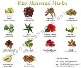 Chinese Herbal Remedies » home remedies news