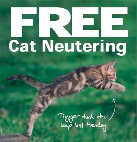 free neutering neutering