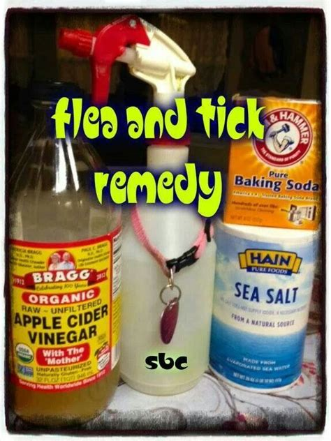 flea and tick remedy for pets
