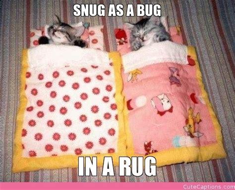 snug as a bug sleep sack making this for autumn but snug as a bug cuteness pinterest