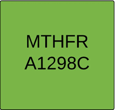 Mthfr A1298c Harder To Detox by What Is Mthfr A1298c Nutrition Genome