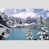 Taiga Landscape Winter | 550 x 350 jpeg 100kB
