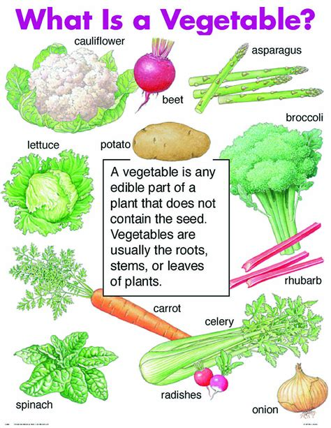 o mei vegetables bilingual al yussana what is a vegetable