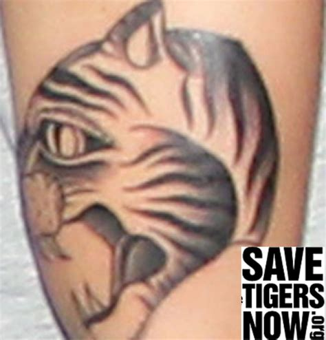 justin bieber tiger tattoo design copyranter justin bieber s tattoos branded