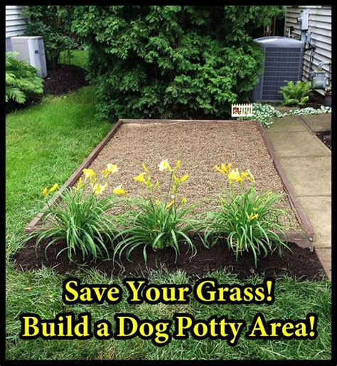 make a dog run in your backyard 25 best ideas about dog friendly backyard on pinterest