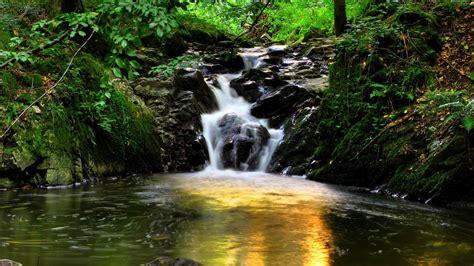 full hd wallpaper creek karlovy vary czech republic moss
