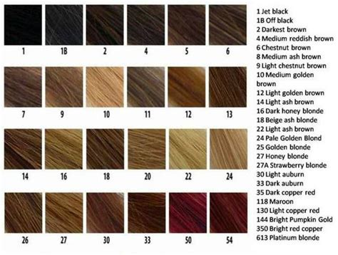 n easy hair color chart weave hair color chart photosgratisylegal