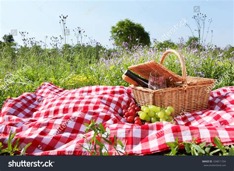 backyard picnic image gallery outdoor picnic