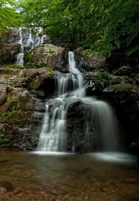 dark hollow falls shenandoah national park virginia