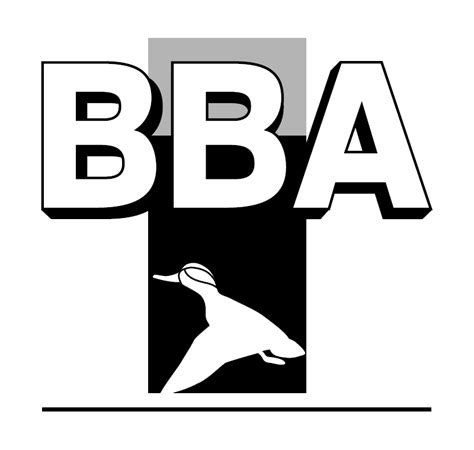 Bba Mba Scope by What Is Bba Who Are Eligible Of Doing That Course What