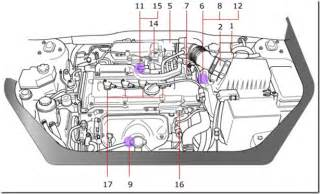toyota vehicle cooling system diagram toyota wiring
