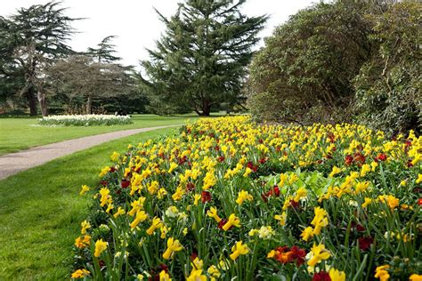 Flowers For My Garden The Flower Garden Greenwich Park The Royal Parks