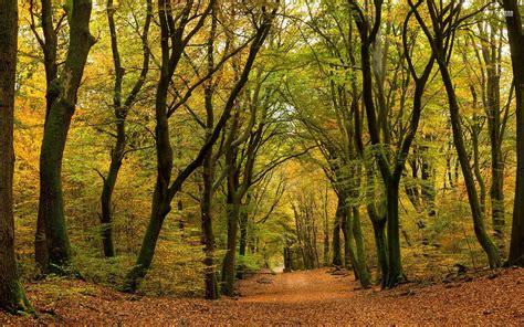 Tiny Häuser Bayern by Die 72 Besten Herbstliche Natur Sch 246 Ne Hintergrundbilder