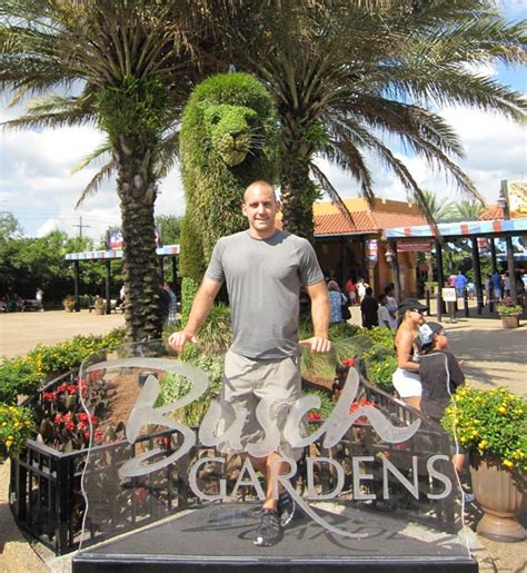 Busch Gardens Reviews by Review The Roller Coasters At Busch Gardens Ta