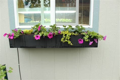 Window Planters by Step By Step Guide To Planting A Window Box
