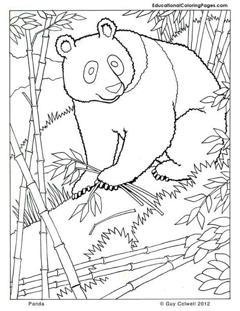 printable coloring pages of realistic animals panda coloring zoo animals coloring cute free