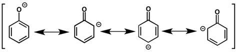 Multiplek Phenol phenol preparation reactions study