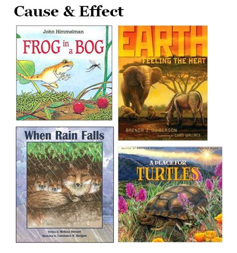 picture books for cause and effect 17 best images about text structures on cause