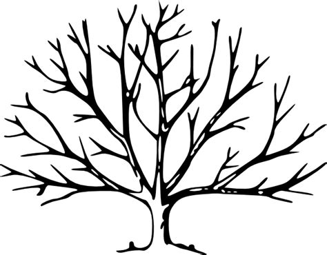 tree trunk with branches template printable brown tree branch template clipart best