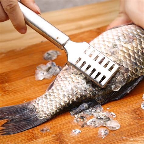 stainless steel fish scale remover cleaner scaler scraper