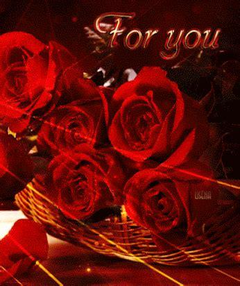 de 6 rosas rojas amor twitter facebook google descripcin con rosas hermosas flores y rosas rojas y blancas amarillas gifs