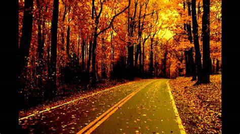 country roads pretty lights remix hd