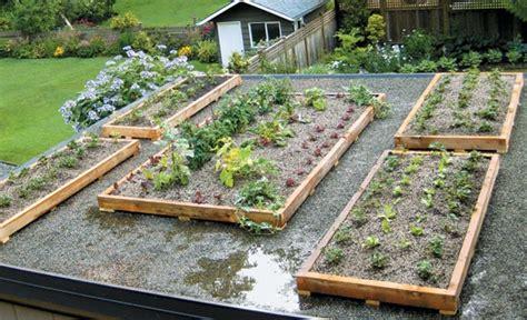 Rooftop Vegetable Garden Ideas How To Design And Create A Green Roof Garden Senga Lindsay Garden Design