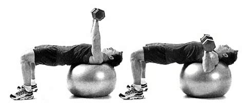 stability ball bench press bench press stability 28 images 17 best images about