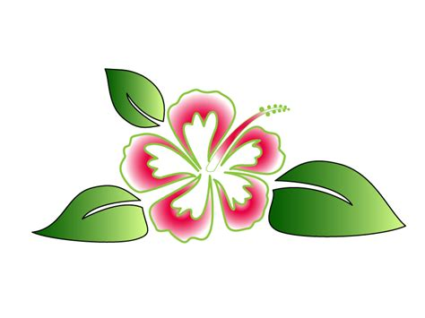 hawaiian flower vector   clip art  clip art  clipart library