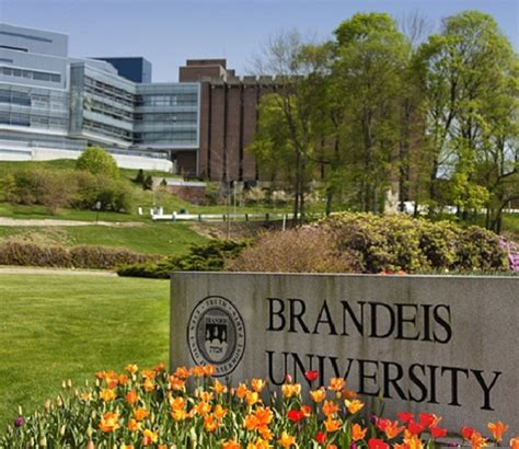 Brandeis Part Time Mba by Gmp Overview Spjimr
