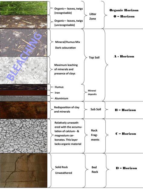 diagram of a soil profile roots n shoots soil profiles maintenance